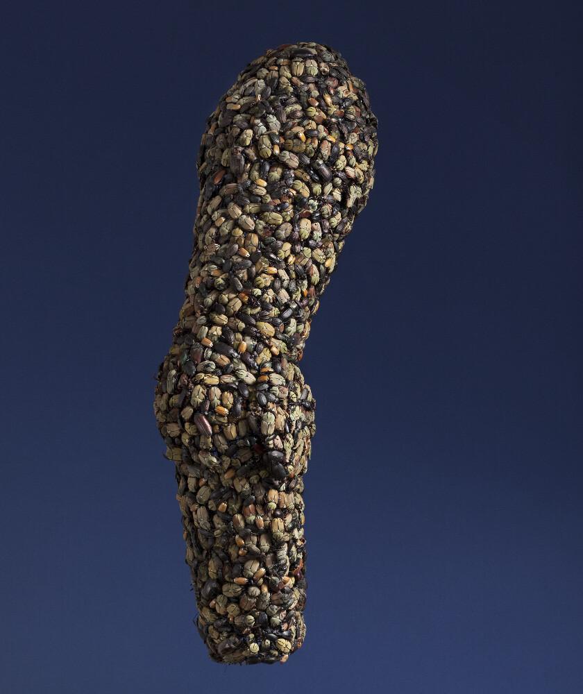Jan Fabre, Armour (Arm), 1997, galleria Il Ponte, Firenze