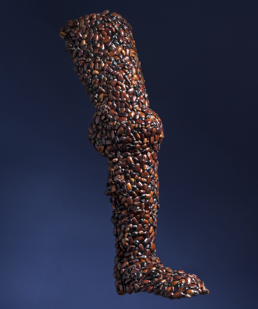 Jan Fabre, Armour (Leg), 1997, galleria Il Ponte, Firenze