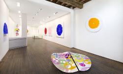 Sonja Han, Enchanted Destiny, 2017, galleria Il Ponte, Firenze_gr