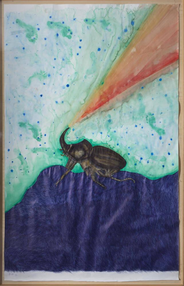 Jan Fabre, Rhinoceros beetle in state of war (Metamorfoses), 1992, galleria Il Ponte, Firenze