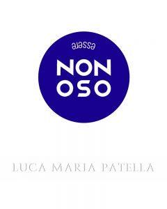 Luca Maria Patella, non oso, copertina, galleria Il Ponte, Firenze