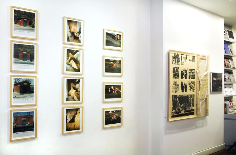 Radici radicali, galleria Il Ponte, Firenze_01