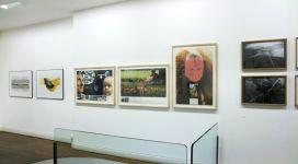 Radici radicali, galleria Il Ponte, Firenze