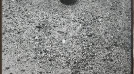 Sophie Calle, L'arte è una parola, galleria Il Ponte, Firenze